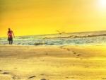 Buy Early Morning Beach Walk